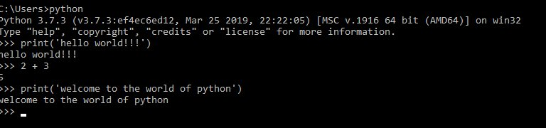 run python scripts